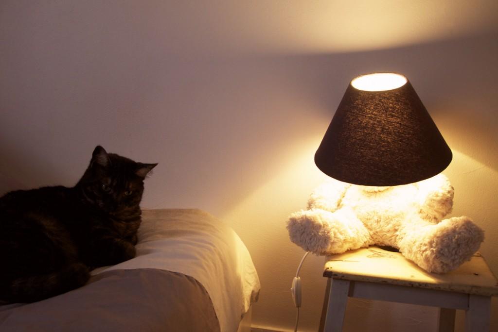 youbold-lampe-peluche11