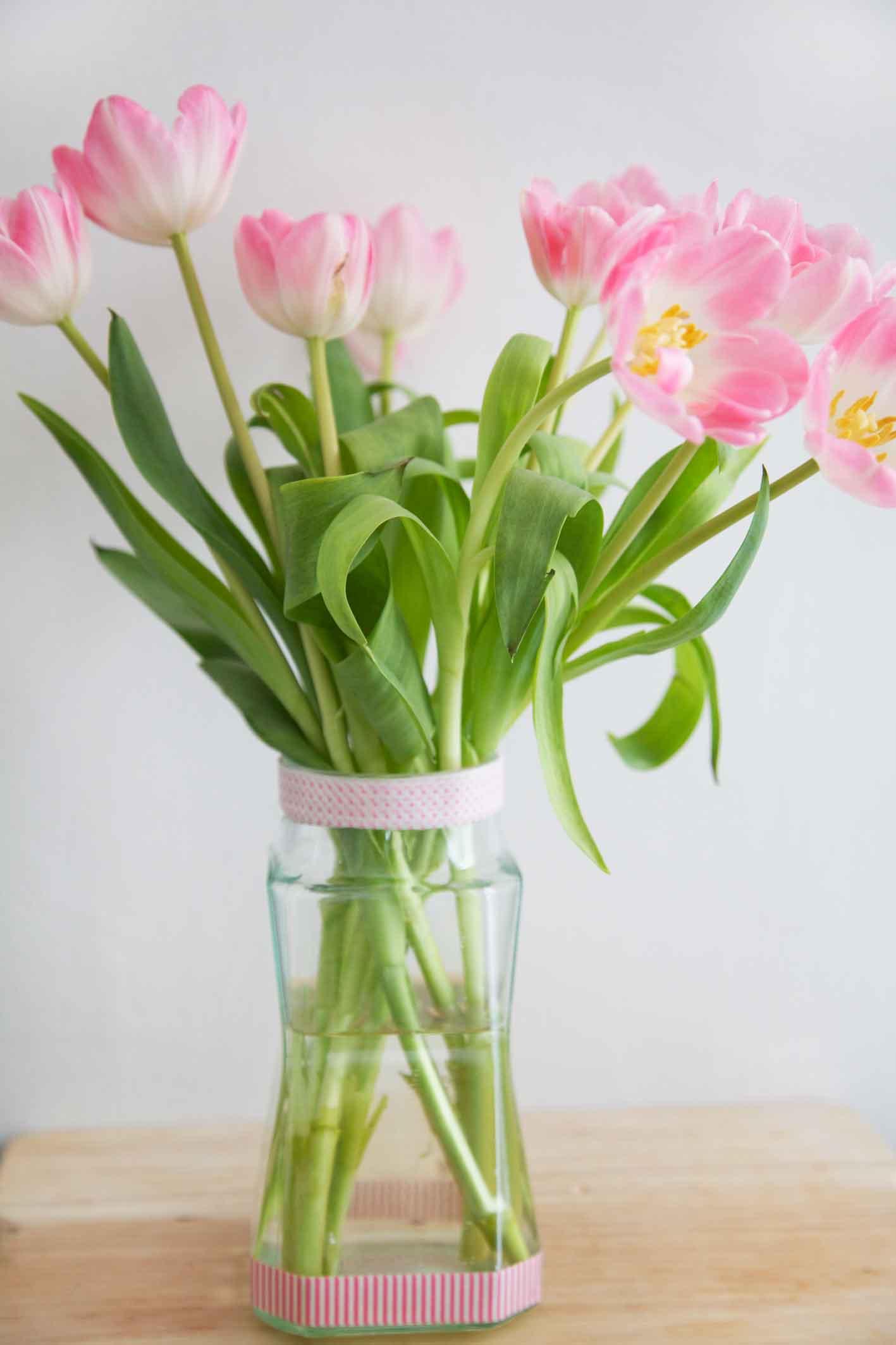 youbold-tulipe5