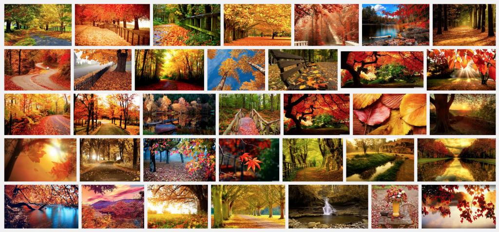 autumn-lemonrock