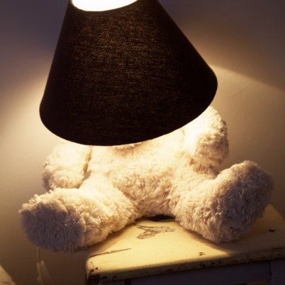 Lighting Teddy